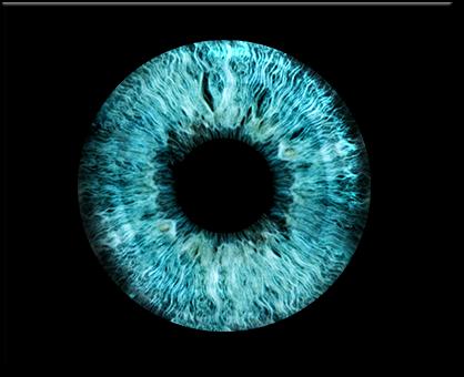Irisfoto vom Auge drucken